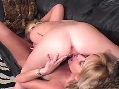 Beautiful lesbians lick each other